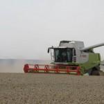 Enquête sur la destruction suspecte de blé